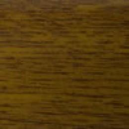 Złoty dąb